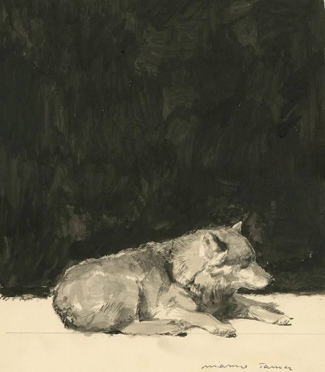 Marzio tamer acquarello nero su carta natura master for Marzio tamer